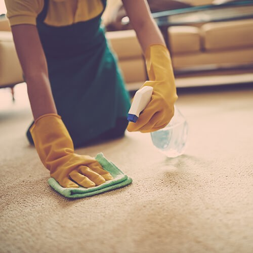 Carpet cleaning | Leaf Floor Covering