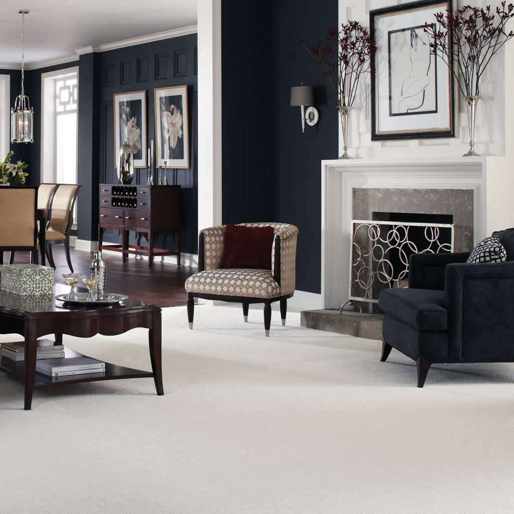 White Carpet in Living room | Leaf Floor Covering